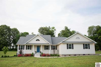 Calloway County Single Family Home For Sale: 250 Sunshine Lane