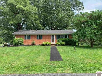 Calvert City Single Family Home For Sale: 774 E. 5th Ave.
