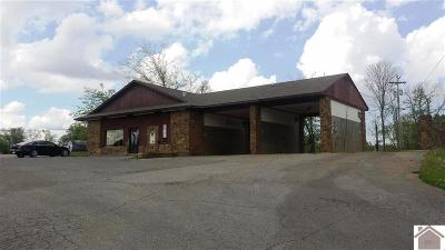 Marshall County Commercial For Sale: 15987 Us Hwy 68 East