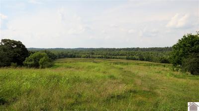 Cadiz Farm Contract Recd - See Rmrks: Coyote Ridge Rd.