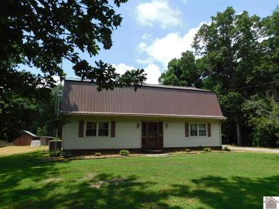 Graves County Single Family Home For Sale: 12617 State Route 303