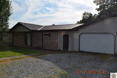 Mayfield Single Family Home For Sale: 4097 State Route 339 S