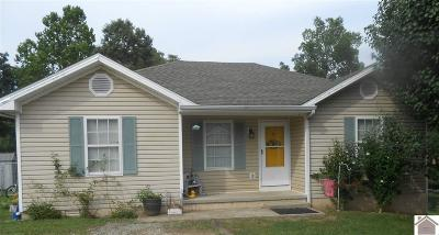 Cadiz Single Family Home Contract Recd - See Rmrks: 32 Chestnut Drive