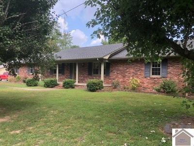 Graves County Single Family Home For Sale: 8122 State Route 121 S