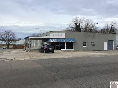Graves County Commercial For Sale: 201 N 9th