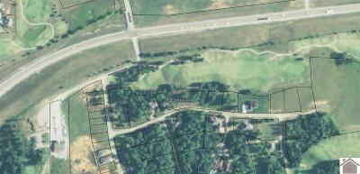 Trigg County Residential Lots & Land For Sale: Comanche Drive