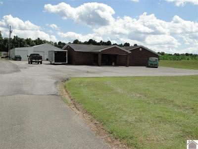 Marshall County Commercial For Sale: 4307 Oak Level Road