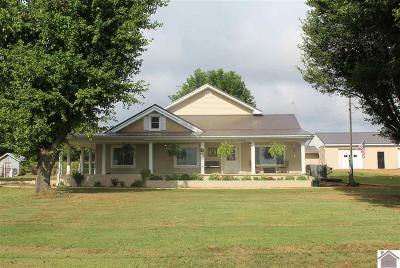 Hickory Single Family Home For Sale: 6297 State Route 1241