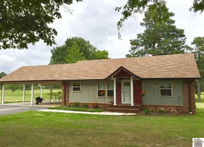 Benton Single Family Home For Sale: 10187 Us Hwy 68e