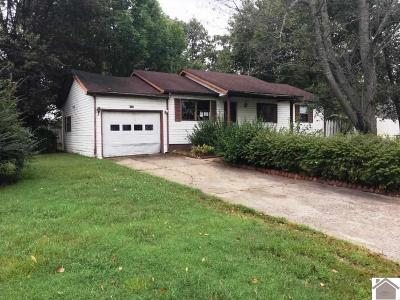McCracken County Single Family Home For Sale: 4735 Craven Drive