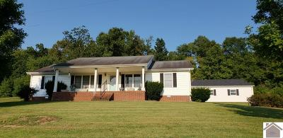 Lyon County, Trigg County Single Family Home For Sale: 250 Panther Creek