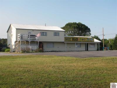 Grand Rivers KY Commercial For Sale: $249,000