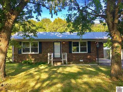 Trigg County Single Family Home For Sale: 25 Cardinal Dr