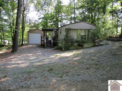 Cadiz Manufactured Home For Sale: 188 Shady Ln.