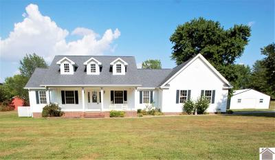 Graves County Single Family Home For Sale: 2878 St Rt 303