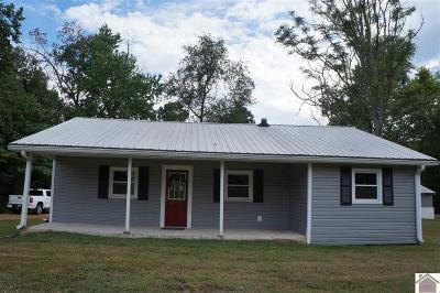 Calloway County Single Family Home For Sale: 1847 State Route 121 N