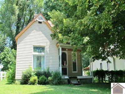Princeton Single Family Home For Sale: 806 W Main St