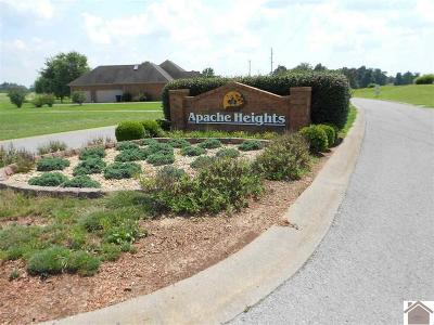 Residential Lots & Land For Sale: #72 Apache Heights