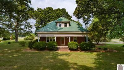 Calloway County Single Family Home For Sale: 893 Peach Orchard Road