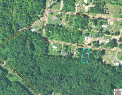 Residential Lots & Land For Sale: Rich Circle