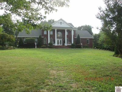 Calloway County, Marshall County Single Family Home For Sale: 2085 Sharpe School Rd