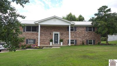 Paducah Single Family Home For Sale: 215 Windmill