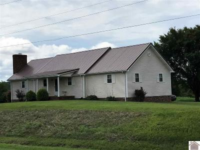 Princeton KY Single Family Home For Sale: $165,000