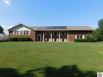 Paducah Single Family Home For Sale: 255 Brentwood