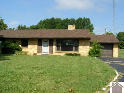 Livingston County Single Family Home Contract Recd - See Rmrks: 307 East Lion Drive