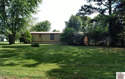 Murray Manufactured Home For Sale: 501 Rieman Drive