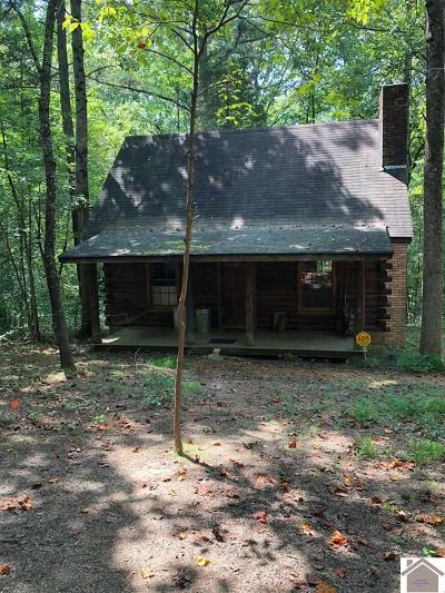 Calloway County Single Family Home For Sale: 67 Williford Drive