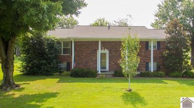 McCracken County Single Family Home For Sale: 158 Rue Thierry Drive