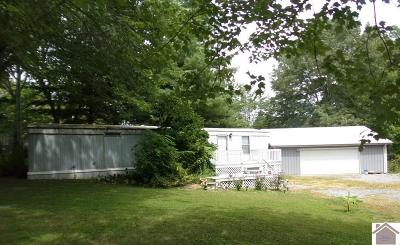Cadiz KY Manufactured Home For Sale: $45,000