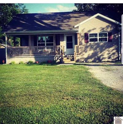 McCracken County Single Family Home For Sale: 2700 Ohio Street
