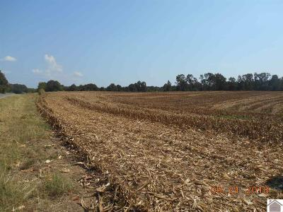 Cadiz KY Farm For Sale: $215,000