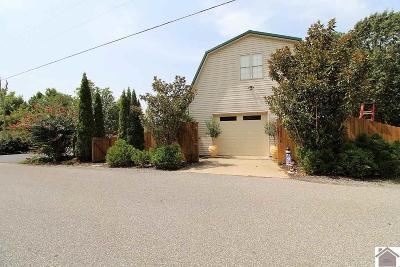 Calloway County, Marshall County Single Family Home For Sale: 21 Jonathan Pt.