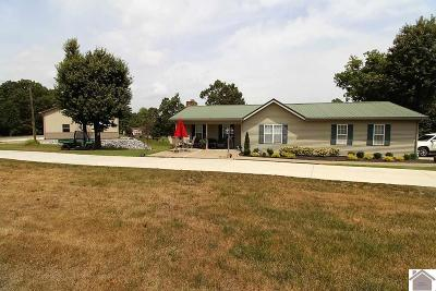 Marshall County Single Family Home For Sale: 20 Jonathan Pt.