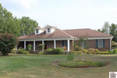 Calloway County Single Family Home For Sale: 253 Stoneside Drive