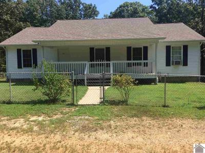 Calloway County, Marshall County Single Family Home For Sale: 38 Jordan Dr.