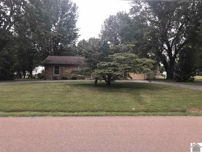 McCracken County Single Family Home For Sale: 110 Summit Drive