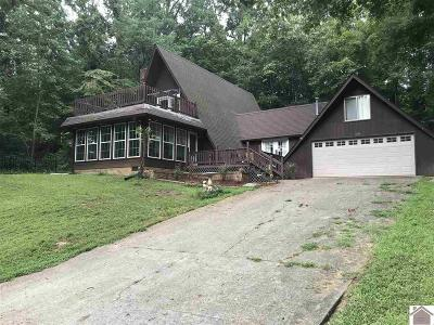 Cadiz KY Single Family Home For Sale: $159,000