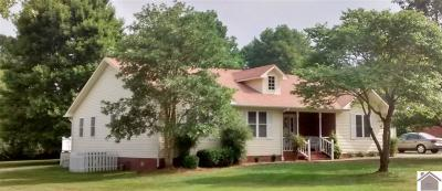 Calloway County, Marshall County Single Family Home For Sale: 1904 Melrose