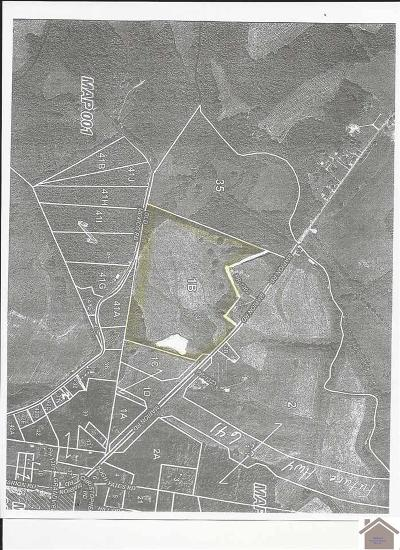 Fredonia KY Residential Lots & Land Contract Recd - See Rmrks: $180,000