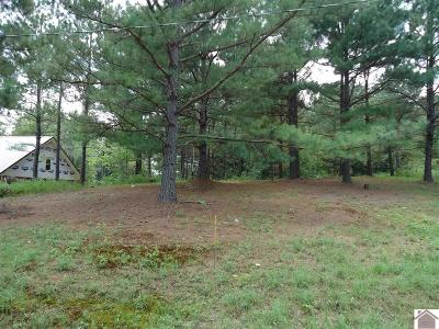 Calloway County Residential Lots & Land For Sale: 151 Wildcat Drive