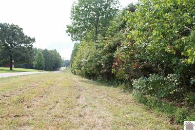 Eddyville Residential Lots & Land For Sale: Hwy 93 South