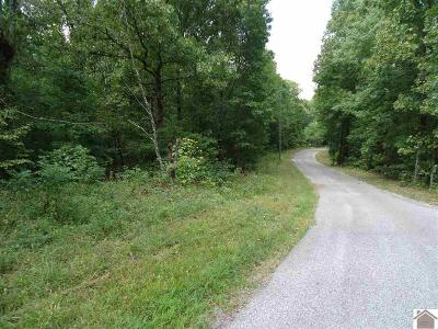 Calloway County Residential Lots & Land For Sale: 150 Meadowlard Drive Lot# 372, 373