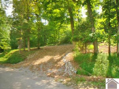 Lyon County Residential Lots & Land For Sale: 242 Tinsley Creek Rd.