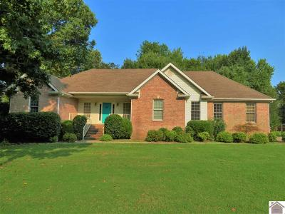 Paducah Single Family Home For Sale: 310 Stonecreek Place