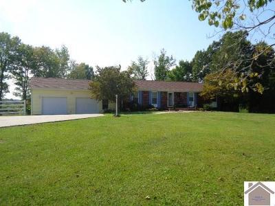 Marshall County Single Family Home For Sale: 80 Barnes Lane