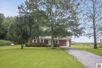 Murray Single Family Home For Sale: 1528 Locust Grove Road